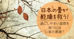 たかが乾燥、されど乾燥~乾燥には、なんと昔からの日本文化が効く!?~