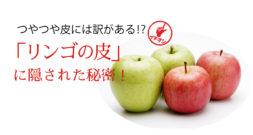 ものすごく最近まで誤解していました!~りんごの皮のピカピカ~