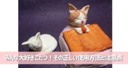 日本の冬にぴったりな家具ですが健康のためには使用法注意! ~こたつ~