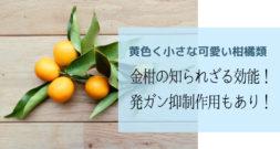 皮と実、どっちを食べますか?~ きんかんと柑橘類のお話~