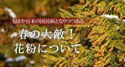 すでに日本の国民病?! そろそろアレの大量飛散が……~花粉~