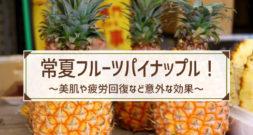 誰でも知ってる真夏のトロピカルフルーツといえばこれ~パイナップル~