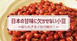 甘いぜんざい、和菓子…のイメージしかないのでは?~今が旬の豆・あずき~