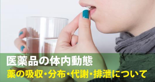 医薬品の体内動態:薬の吸収・分布・代謝・排泄について